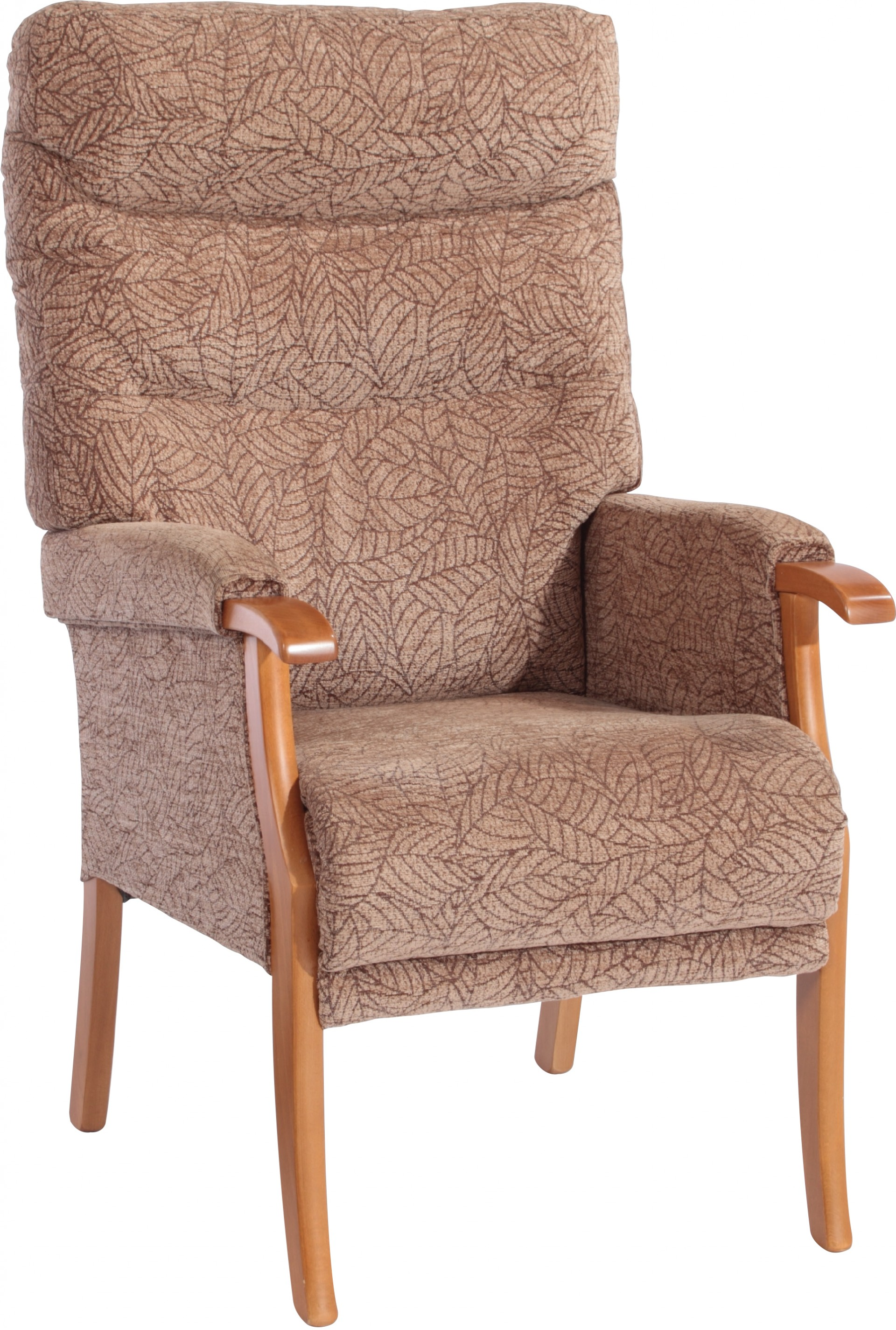 Ordinaire Orwell Fireside Chair Leaf Cocoa